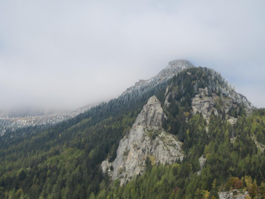 Bec di Roci Ruta - in alto i pini resi bianchi dalla brina