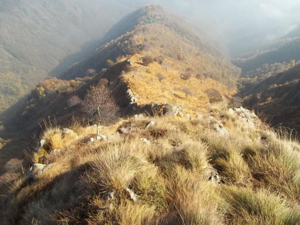La cresta da Selletto