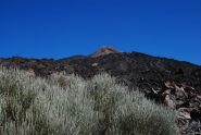 Il Teide dal sentiero 23