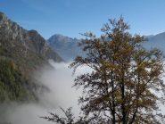 arriva la nebbia
