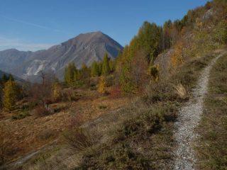 il sentiero all'inizio, sullo sfondo il Monte La Piastra