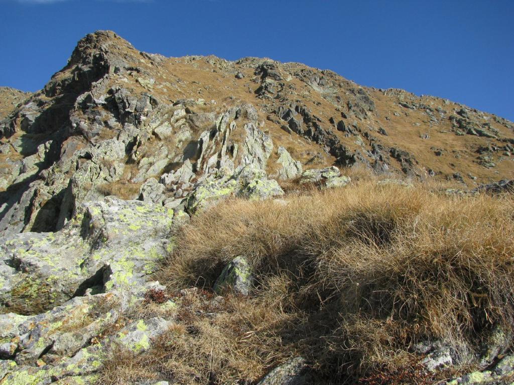 Mionda (Punta della) da Berchiotto per il Vallone di Codebiollo 2011-10-31