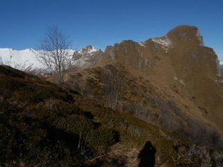 vista sulla Rocca Radevil nei pressi del colletto che precede la vetta