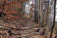 Il bel sentiero verso Celle