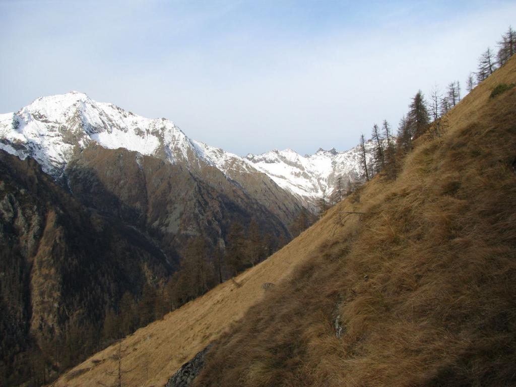 I pendii di salita al Monte Civetto