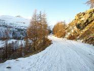 La strada che porta a Dondena a quota 1900 m