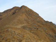 salita al monte Cerano