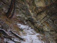 camoscio sulle rocce...