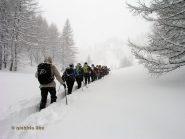 Verso l'Alpe Misanco