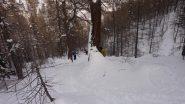 Discesa nel bosco