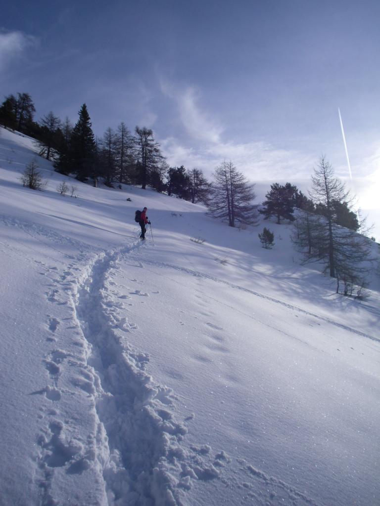 France (Becca) da Vetan 2012-01-01