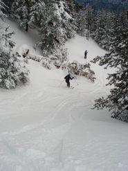 curve in neve farinosa