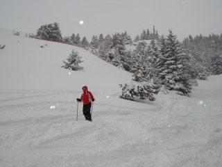 una nevicata abbondante