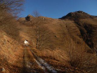 in arrivo alla casa del margaro salendo dalla forestale; da sx  a dx le Rocche Calere, la Rocciaia e il Colle della Gorgia seminascosto