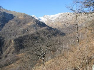 Sguardo sull'alto Vallone del Savenca