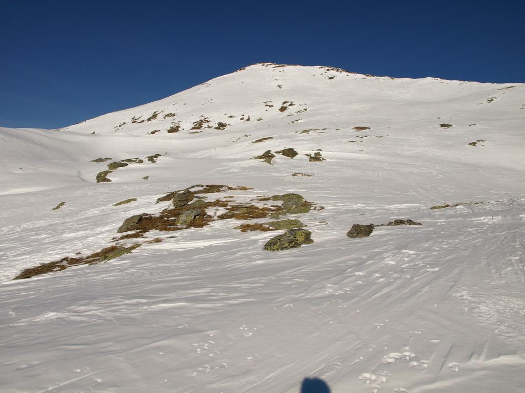 Punta Valfredda e i pendii per raggiungerla dalla conca di Colle Valnera. Da qui non sembra ma l'ultimo tratto è molto ripido