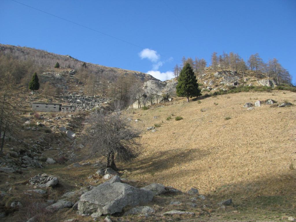 Alpe Nivoiaj