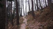 Bel sentiero in salita