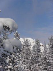 13 - si intravede la Rocca Remolon in mezzo al bosco, ormai siamo alla stessa altezza