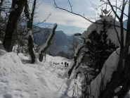 una scorciatoia nel bosco