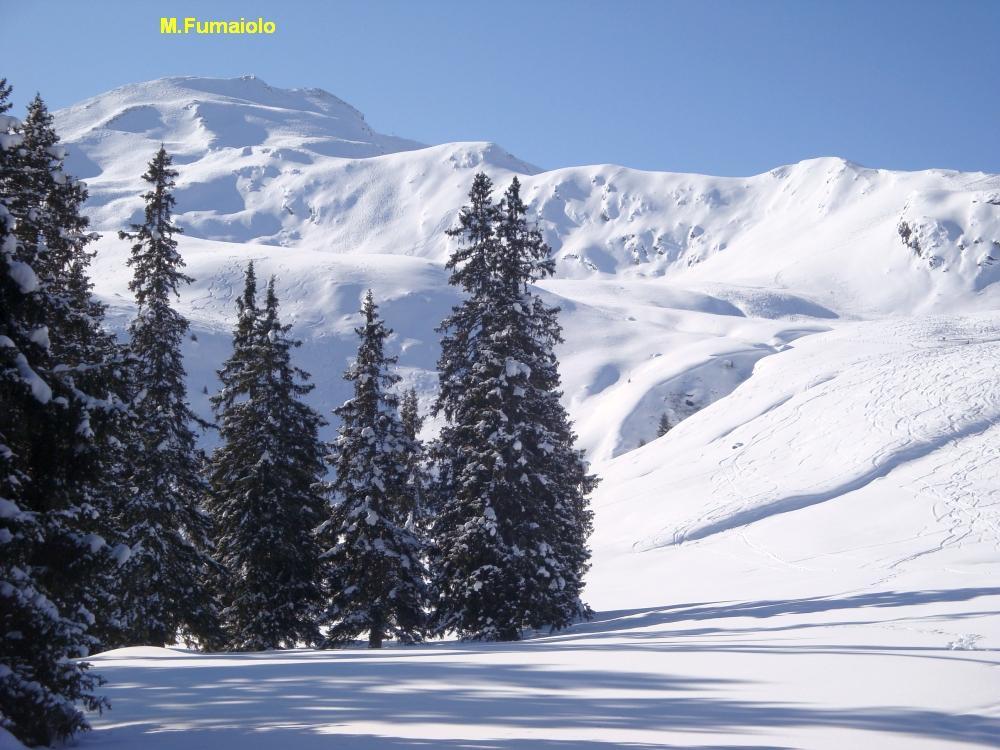 Fumaiolo (Monte) o Glaitner HochJoch 2012-02-05