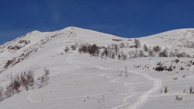 Bossola (Cima) da Rueglio per il Colletto Partor 2012-02-09