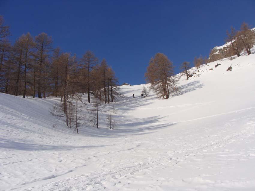 sui pendii dopo l'alpeggio