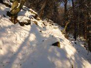 Il primo tratto del sentiero è nel bosco (1300 m)