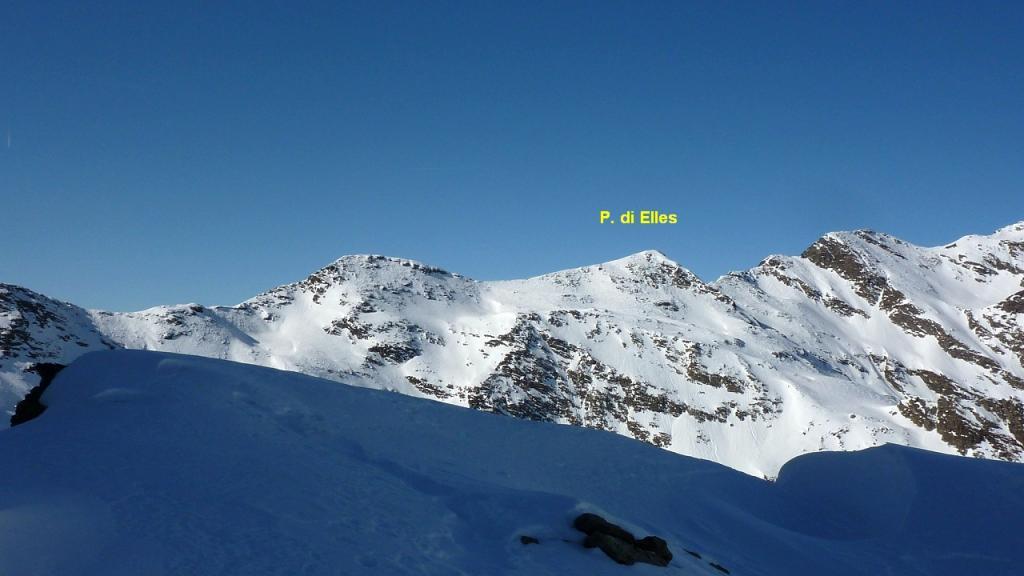 Elles (Punta di)/EllesSpitze da Malga Hinterstein 2012-03-06