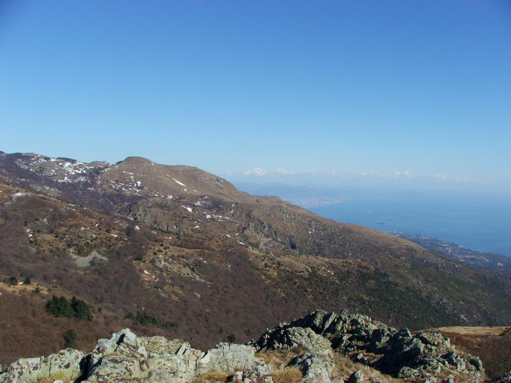 Priafaia (Monte) da Faie 2012-02-26