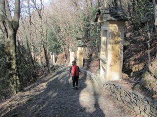 La via Crucis del Monte Mesma