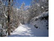 L'inverno e' tornato in Val Chisone..