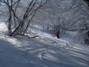 sciando a nord