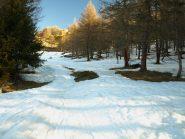 La prima salita accanto alla pista da sci da Estoul