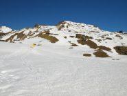 Nei pressi dell'Alpe Palasina (2400 m), sullo sfondo Punta Palasina (2778 m)