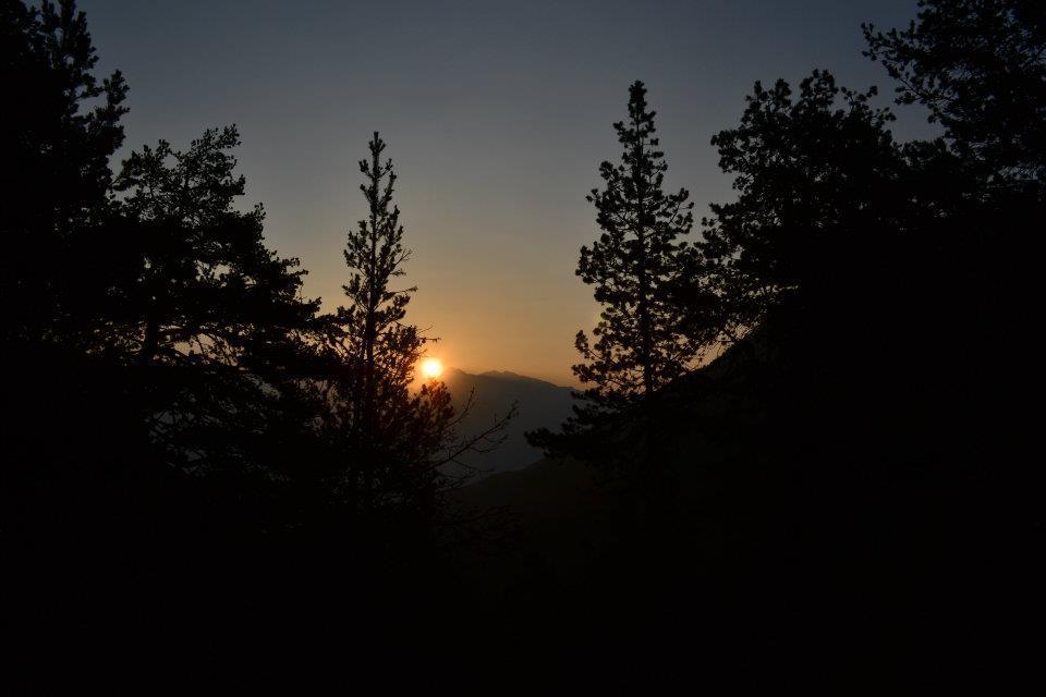 alba nel parco