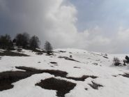 03 - poco sopra l'ultimo alpeggio, in vista della cima...