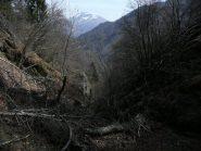 La rocambolesca discesa nel canalone del tributario del rio Sionei, Quinziena sullo sfondo