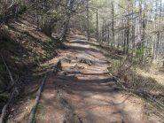 Il tratti di sentiero più bello