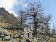 Alpe Brenvej