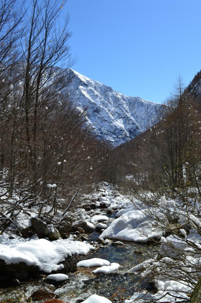 torrente risalendo la valle