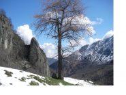 Nel Vallone dell'Orsiera la neve e' finita presto...