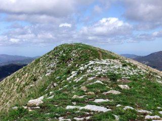La piatta cima dell'Alpesisa