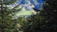 dal bosco spunta Moriglione San Lorenzo (21-4-2012)