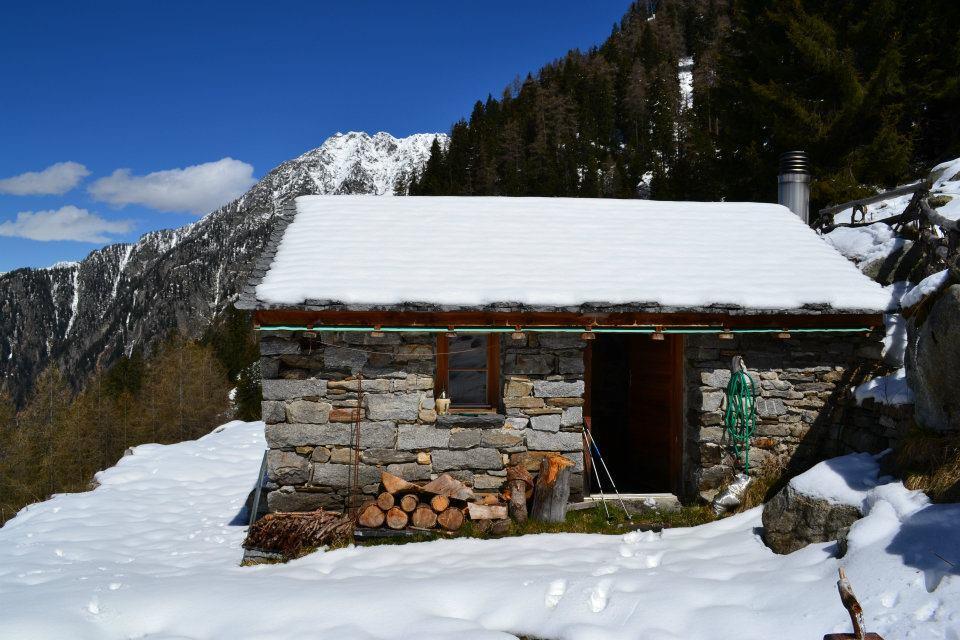 Alp d'Albion (1600 m)