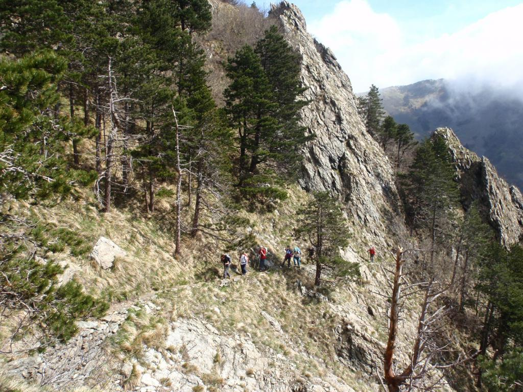 Rama (Monte) da Lerca 2012-04-22