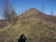 Monte Tagliarè, visto salendo dopo il Bosco del Brusey