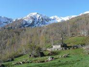 Salendo verso Alpe Volanza e Uia di Corio ben innevata