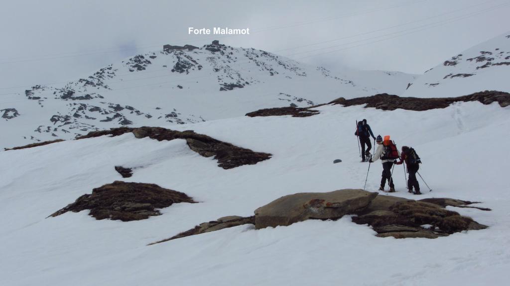 i soci in salita verso la conca dove si trovano le casermette diroccate de la Perte (28-4-2012)