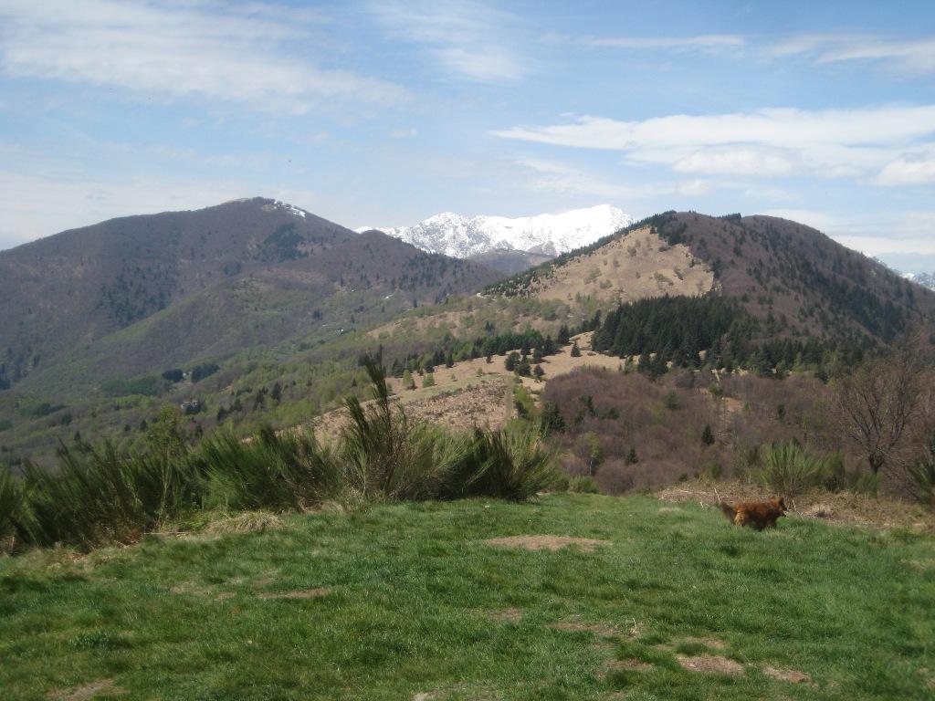 Monte Pian Bello condietro Marona e Zeda